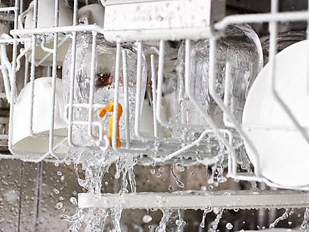 Frischwasserspüler